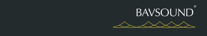 Large jobsite bav logo