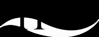 Large coh simple logo bw