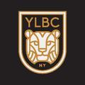 Large ylbc social shield