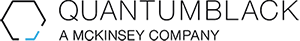 Large qb logo 300