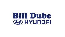 Large dube logo