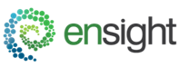 Large ensight logo